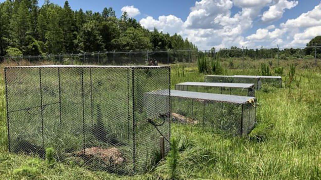 Body farms nos EUA, lugares de estudos forenses